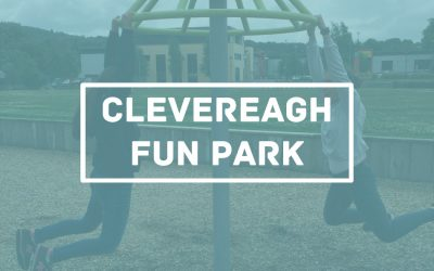 Protegido: En Clevereagh fun park